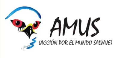 AMUS-logo-394x195