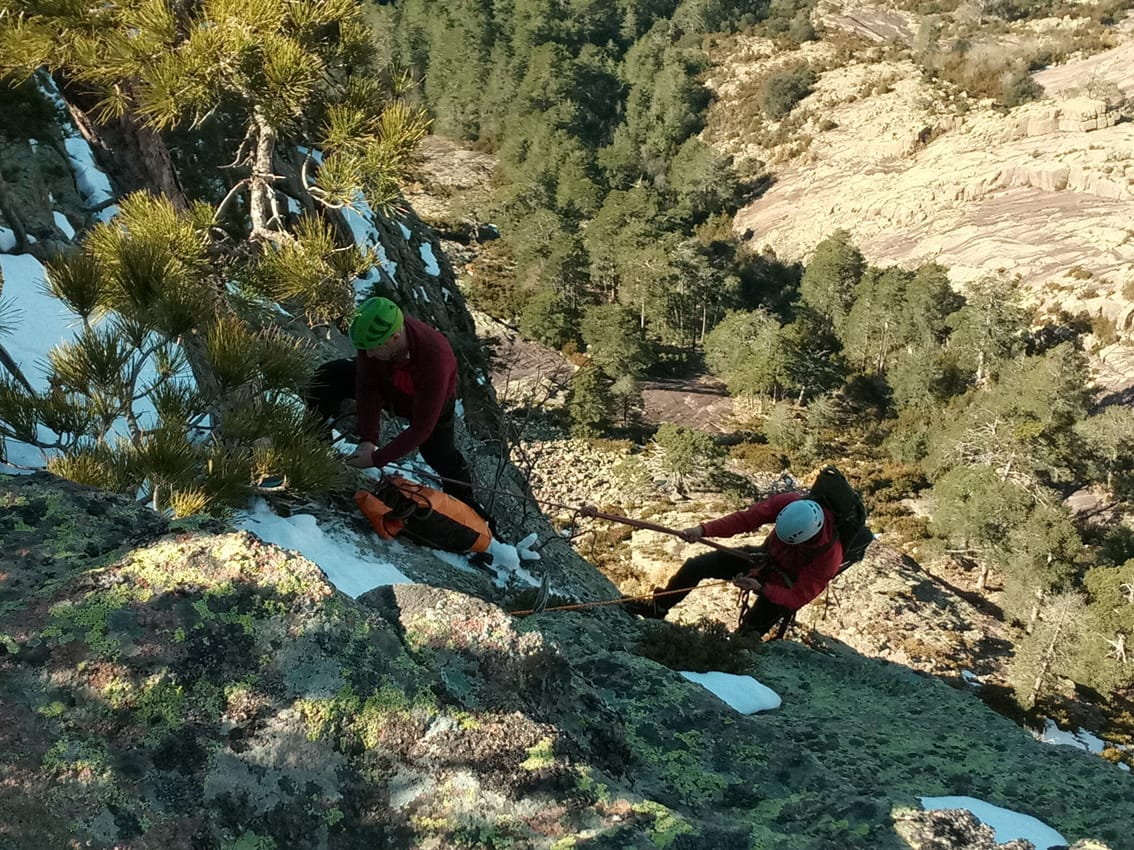 Releasing-Bearded-Vultures-in-Corsica-one-of-the-last-autochthonous-populations-of-the-species-in-Europe