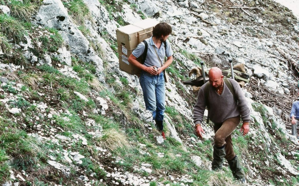 First releases of captive-bred Bearded Vulture in the Alps