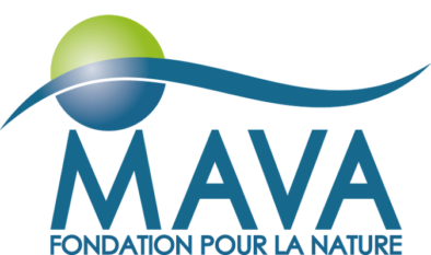 mava-logo-394x233