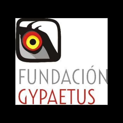 FUNDACION GYPAETUS LOGO