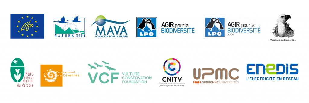 gypconnect partners funder logos