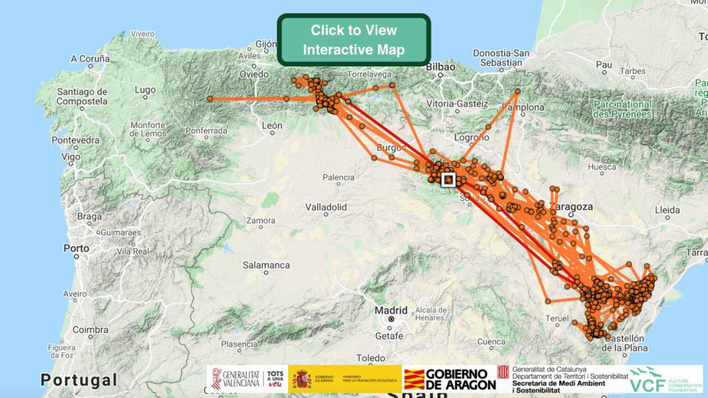 Amic Bearded Vulture GPS Maps