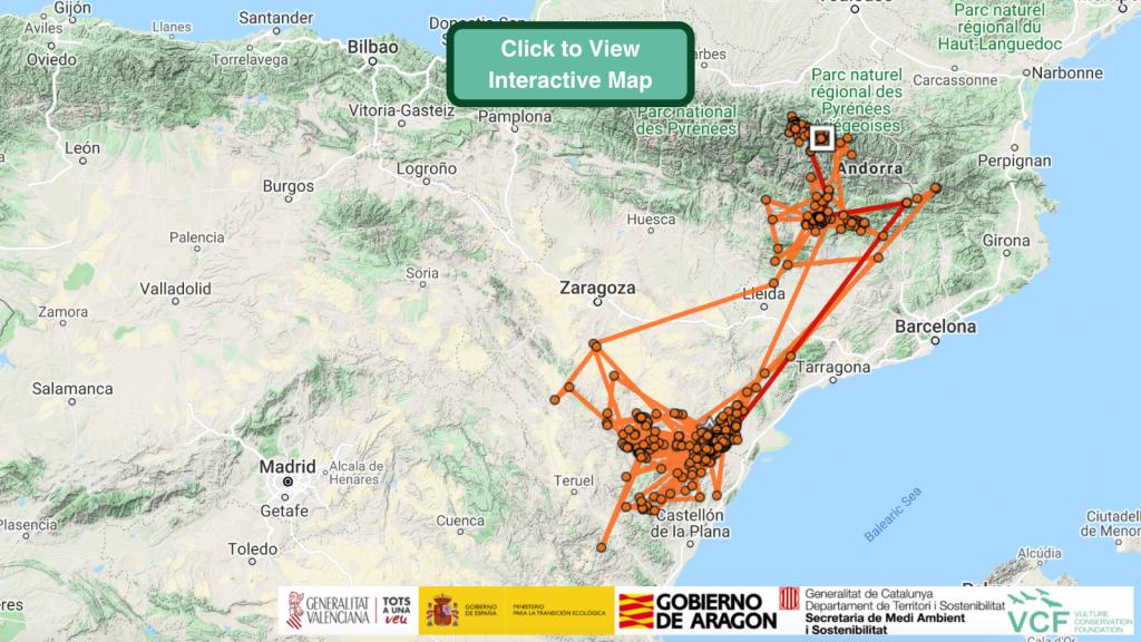 Bassi Bearded Vulture GPS Maps