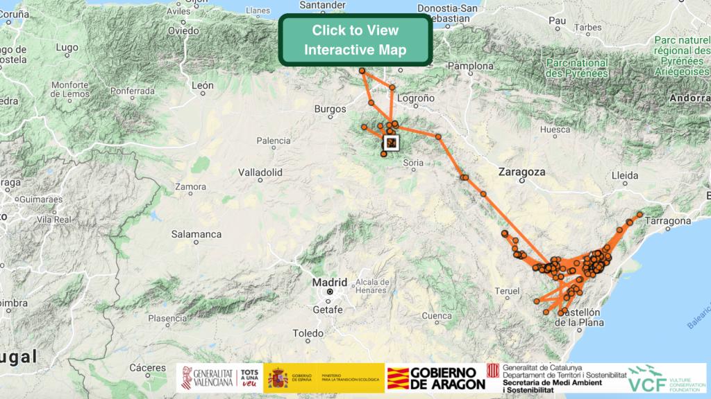 Celest Bearded Vulture GPS Maps