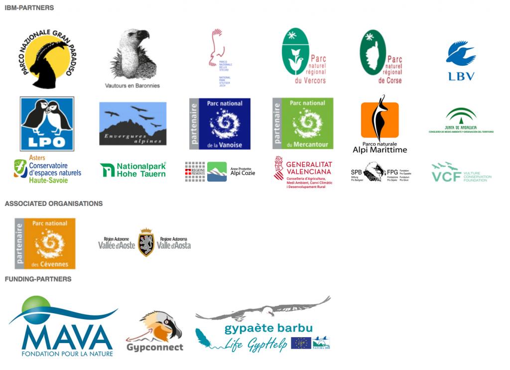 International Bearded Vulture Monitoring Network (IBM) partners funders