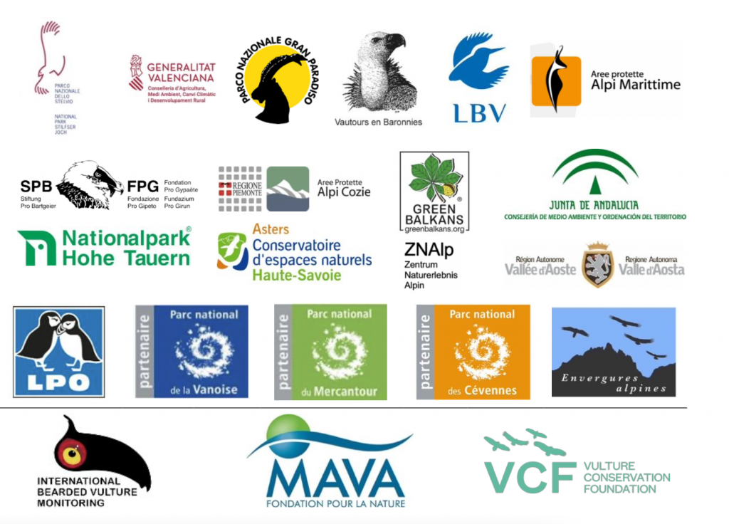 IBM partner logos