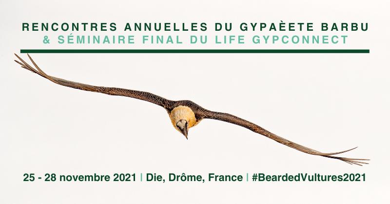 Rencontres Annuelles du Gypaète Barbu 2021 et séminaire final du LIFE GypConnect link card
