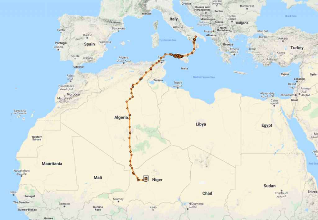 following egyptian vulture sara 2021 autumn migration to niger