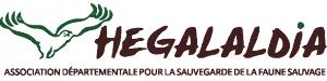 hegalaldia logo