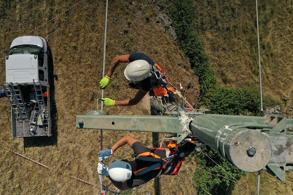 Minimising the risk of electrocution for Griffon Vultures in Sardinia