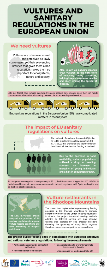 Vultures and Sanitary Regulations in the EU infographic